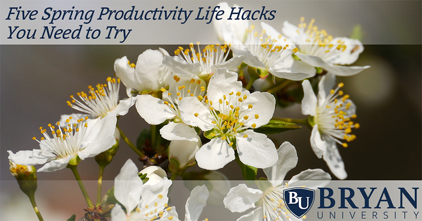 Five Spring Productivity Life Hacks You Need to Try